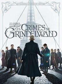 film Les Animaux fantastiques : Les crimes de Grindelwald streaming